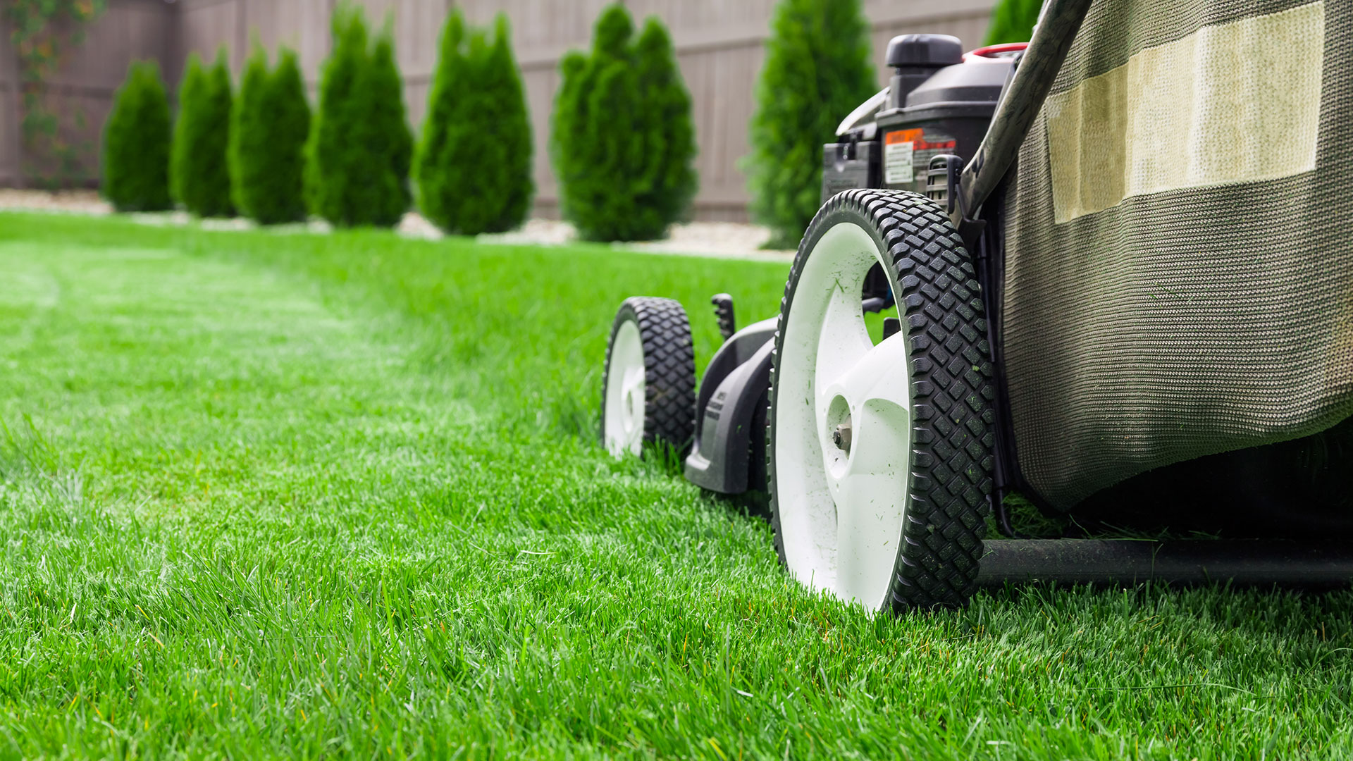 Clarks Lawn - outdoor power equipment specialists